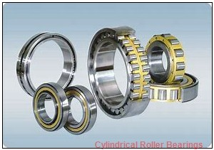 70 mm x 125 mm x 79.4 mm  Rollway E6214B Cylindrical Roller Bearings