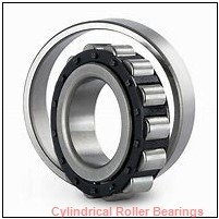 American Roller HCS 251 Cylindrical Roller Bearings