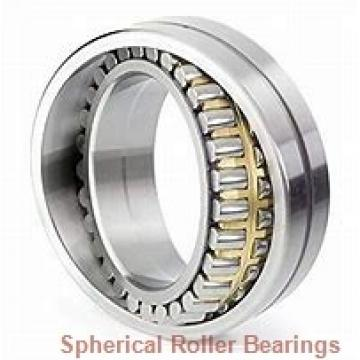 FAG 23124-E1A-M-C3 Spherical Roller Bearings