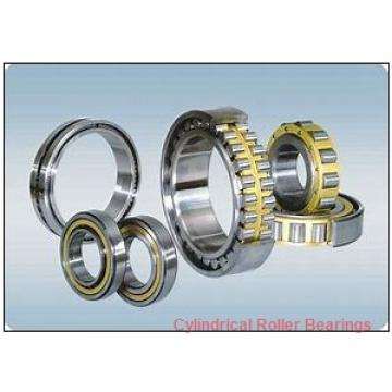 1.181 Inch | 30 Millimeter x 2.165 Inch | 55 Millimeter x 1.339 Inch | 34 Millimeter  INA SL045006 Cylindrical Roller Bearings