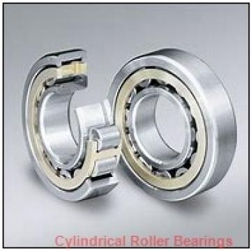 Link-Belt MR1306UVW745 Cylindrical Roller Bearings
