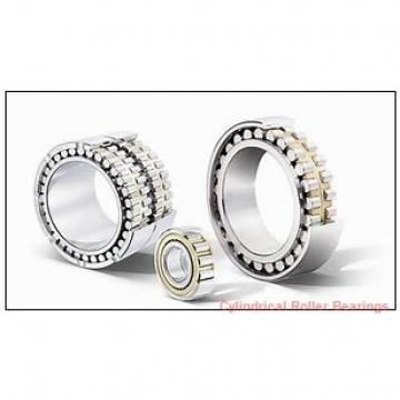 Link-Belt MU1312UM Cylindrical Roller Bearings